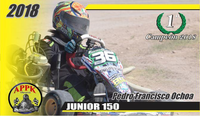 Pedro Francisco Ochoa campeón en Junior 125